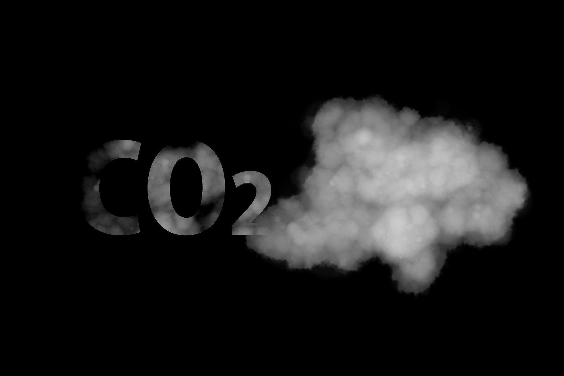 La Huella de Carbono compensa a las empresas